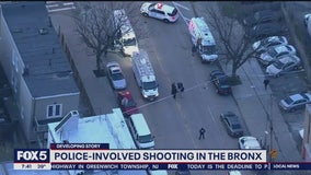 Cops shoot man who lunges at them, reports NYPD