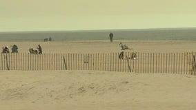 Some Long Island beaches to restrict access to residents only