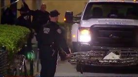 Deer captured after eluding police for several hours in East Harlem