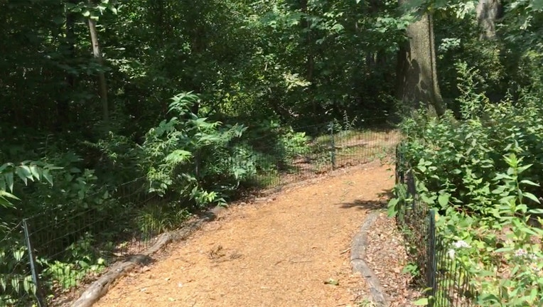 A dirt path and greenery in Central Park