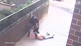 Video shows thief choking woman, stealing her bag