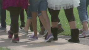 School segregation endures in New York and beyond