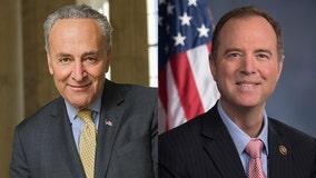 NY man admits to threatening to kill Sen. Schumer, Rep. Schiff
