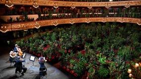 Barcelona opera house fills seats with 2,292 plants in first concert since coronavirus lockdown