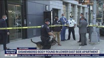 Dismembered body found