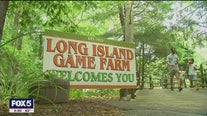 Long Island enters Phase 4