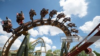 'Scream inside your heart': Japanese theme parks implement screaming ban on roller coasters