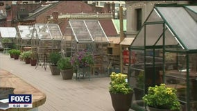 Financial district restaurant tries out greenhouses to attract customers