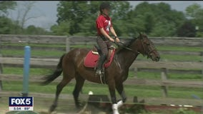 Sanctuary for retired racing horses in NJ in need of financial help