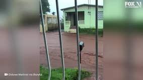 Tropical Storm Isaias slams Puerto Rico and Dominican Republic
