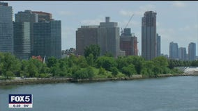 Residents push to save hundreds of trees on Roosevelt Island