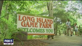 Long Island enters Phase 4 of reopening