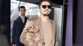 Orlando Bloom asks fans for help finding missing dog: 'My heart is already broken'
