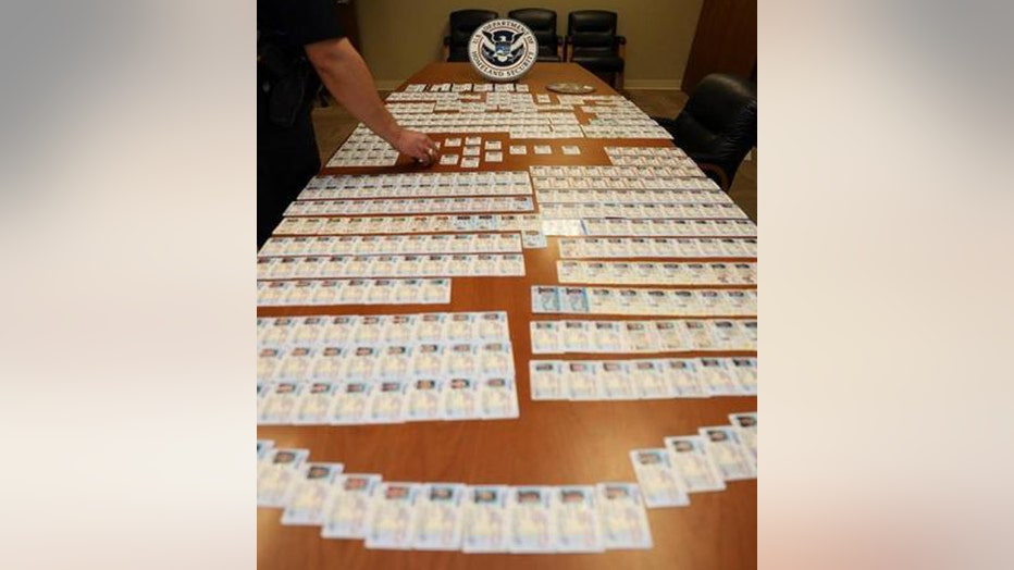 Dozens if fake IDs on display on a table