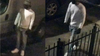 Video shows gunman shooting unsuspecting victim in Brooklyn: NYPD
