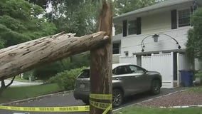 Complaints about downed power lines