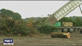 Almost as bad as Superstorm Sandy? Tropical Storm Isaias cleanup continues on Long Island