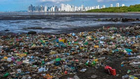 Study projects plastic waste in oceans will triple by 2040 — but there's something we can do