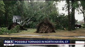 Tornadoes confirmed to have downed trees, damaged buildings in CT and NY