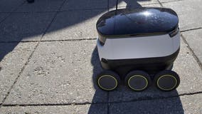 Delivery robot plunges into canal