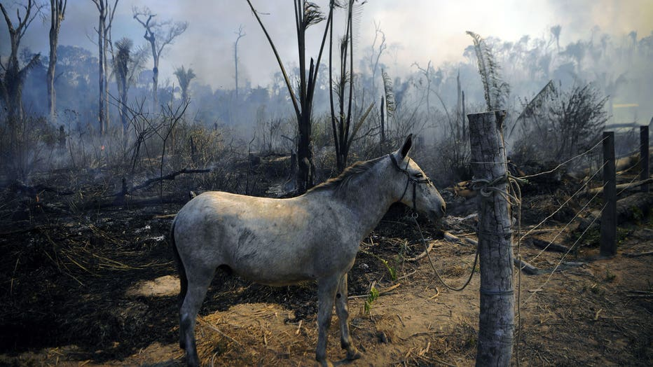 TOPSHOT-BRAZIL-ENVIRONMENT-FIRE