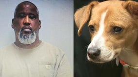 Police arrest suspect accused of throwing puppy across parking lot