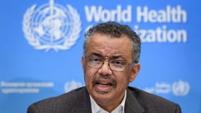 WHO director warns of 'critical juncture' in COVID-19 pandemic in Northern Hemisphere