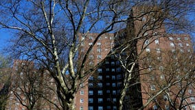 Child, 5, killed in fire at Bronx housing complex