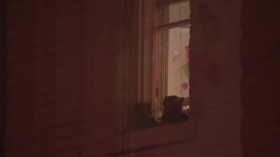 Bullet holes are seen in the window of a Trenton home where two children were killed.