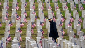 Veterans Day 2020: Quiet parades, somber virtual events