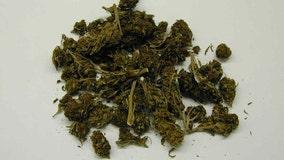 New York's legal marijuana marketplace will take years to develop