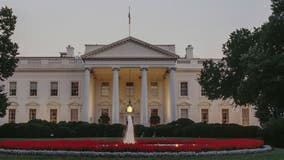 SC man pleads guilty in plot to attack White House, Trump Tower