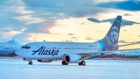 Jet hits bear while landing in Alaska