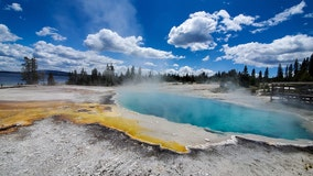 3 cited for trying to cook chickens in Yellowstone hot spring