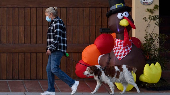 US medical associations urge 'scaled-back' Thanksgiving in open letter to Americans