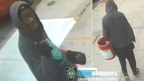 NYPD: Suspect randomly punches 86-year-old woman in Queens, breaks her hip