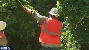 LIPA sues PSEG over tropical storm outage fiasco