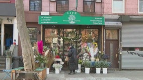 Few NYC shops have applied for Open Storefronts program