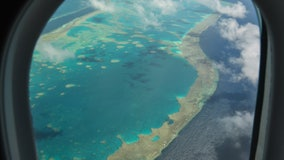 "Climate change: Australia's Great Barrier Reef in ""critical"" condition for the first time, report says"