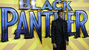 'Black Panther 2' will not recast T'Challa in honor of Chadwick Boseman