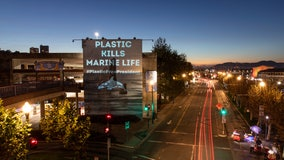 Projecting outrage: California activists shine light on plastic pollution