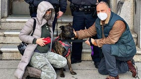 NYPD rescues dog 'Tinkerbell' from frigid Jamaica Bay
