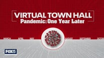 Pandemic - One Year Later