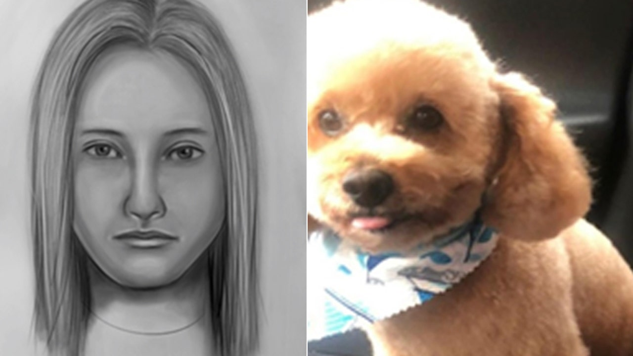 Woman wanted for killing emotional support animal