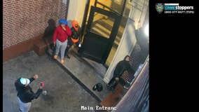 Teen girls climb fire escape to rob Bronx apartment: NYPD