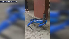 $74,000 NYPD robot dog hits streets of Manhattan