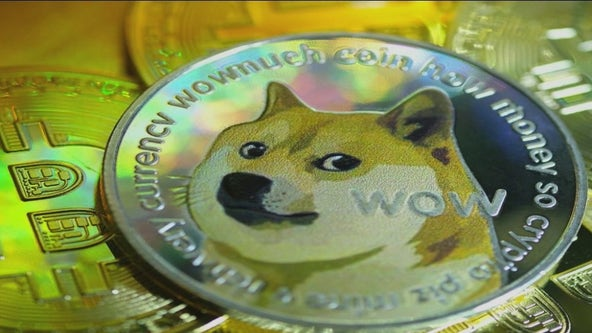 Rise of Dogecoin