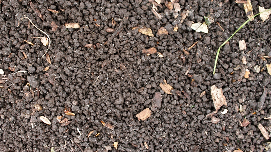 141106_soil-sig_0524SD_PR-Arb.jpg