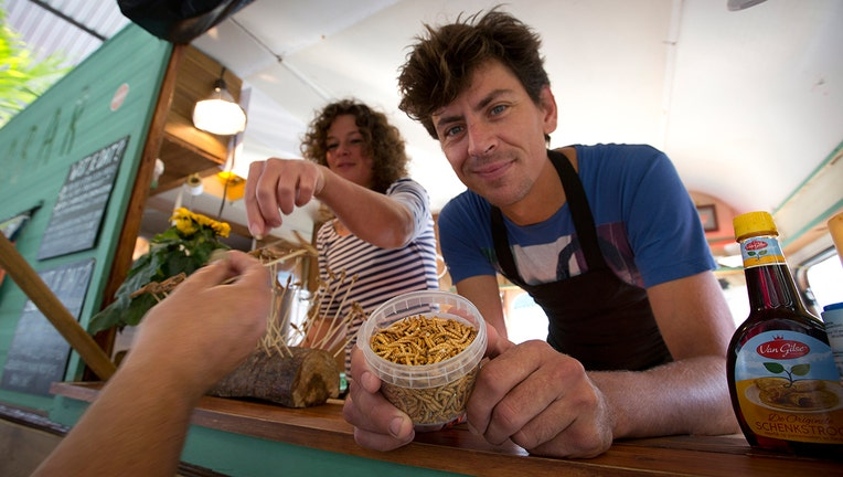 Microbar food truck owner Bart Smit holds a container of yellow mealworms during a food truck festival in Antwerp, Belgium. Dried yellow mealworms could soon be hitting supermarket's shelves and restaurants across Europe.(AP File Photo/Virginia Mayo)