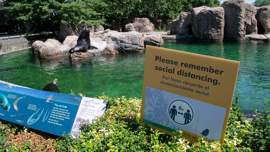 A sea lion habitat and signs about mask wearing and social distancing